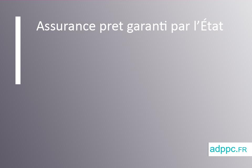 Assurance pret garanti par l'État