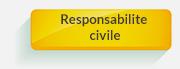 assurance pret Responsabilite civile