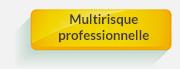 assurance pret Multirisque professionnelle